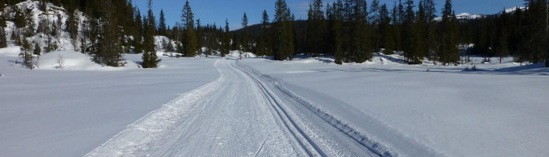 Buinløypa mot Gråndalen